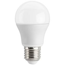 Lampada a Led 10W luce fredda